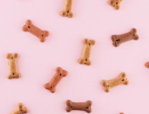 Kakovostna in uravnotežena hrana za pse